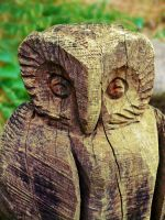 Wooden Owl by Paulus1962