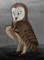 Stellis The Tyto Alba by Howling-Wolf123