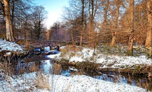 Minnowburn Winter 09 III by Gerard1972