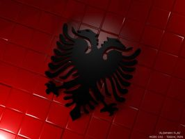 Albanian Flag 3D by terenci