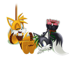 Shadz 'n' Tails: Tie-ups and tickles by Shadz-the-Fox