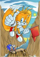 Tails - Capturing the Flag by TheStiv