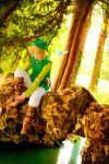 The Legend of Zelda - Achalmy by TrustOurWorldNow