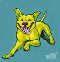 Leapin' Pit Bulls by rgyoung