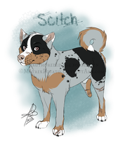 Scitch quick-ref by MatrixPotato