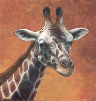 Giraffe Portrait by DragonosX