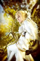 Attention - saber bride cosplay by SelenaAdorian