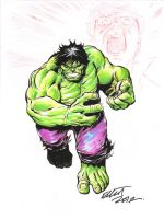 HULK for SANDY RELIEF by jerkmonger