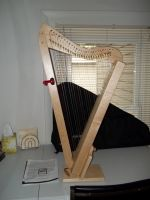 Curtis the Harpsicle Harp by OwossoHarpist