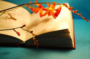 The book and crocosmia.... by TheRedGirl