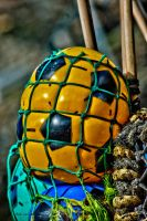 Caught in a net by forgottenson1