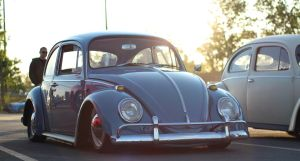 Sunset Bug by KyleAndTheClassics