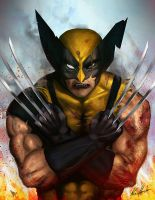Wolverine by superhermit