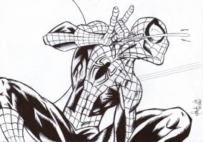 Ultimate Spider-man by Meneguitte