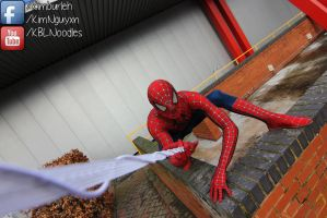 Birmingham Expo: Spiderman by KimNguyxn