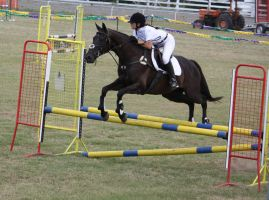 STOCK Showjumping 448 by aussiegal7