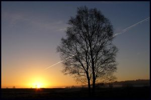 Sunrise with contrail by jchanders