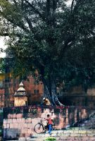 Indian Temples XVII by asadul7
