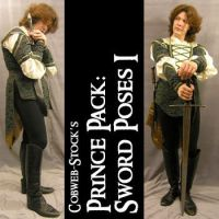 Prince Pack:  Sword Poses 1 by Cobweb-stock