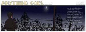 Anything Goes 025 - A beautiful winter night sky by Quebecman
