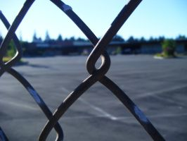 Beyond the Chain Link Fence by Seattle-Storm