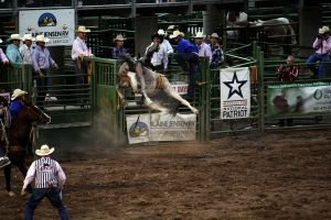 Rodeo: Bronc Riding (9) by DreamsRunningWild
