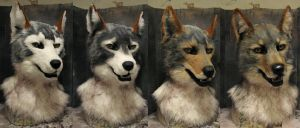 Coyote head airbrush timeline by Crystumes