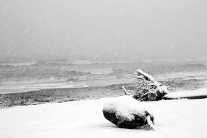 Snow and Sea I by KineticEcho
