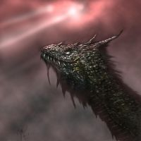 dragon2 by lifeformgraphics