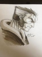Wolverine - days of future past by gidge1201