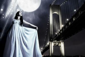 Moonlight Shadow by BVFoto