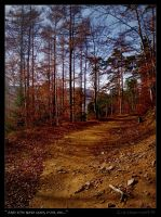 And the road goes ever on II by Zair-Ugru-nad