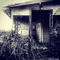 Shrieking Shack by Sarahtarium