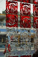 RoSe GlAsS by twinsforever