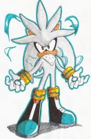 Silver_Hedgehog003 by Max-Echidna-Bat