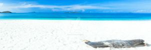 Tropical beach panorama by MotHaiBaPhoto