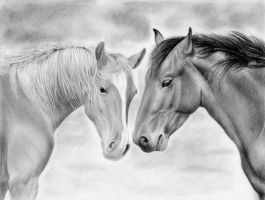 Horses by bloofeesh