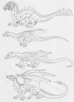 Last Four HP Dragons by Scatha-the-Worm