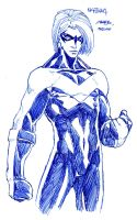 ZephPirate's Nightwing by theCHAMBA