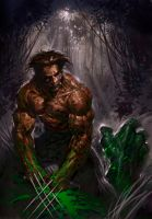 wolverine and hulk by keucha