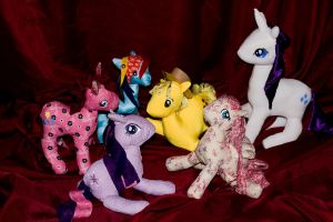 Pony rag doll group shot by joitheartist