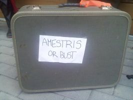 AMESTRIS OR BUST by envy192