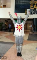 Metrocon 2014 4 by CosplayCousins
