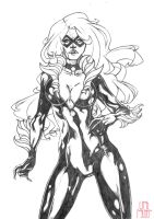 BlackCat by franganesques