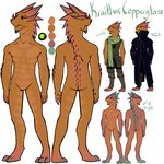 Kraithas Copperglass Character Sheet by CheshireCatGrin