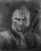 Geralt by glue-poland