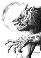werewolf by newtonb