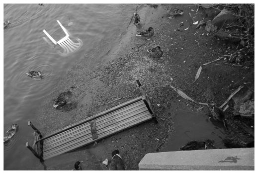 After the flood by reconstruct