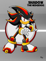 Shadow the Hedgehog by Jofinin