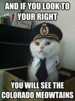 Captain Kitteh Meowtians meme! by LPawesome